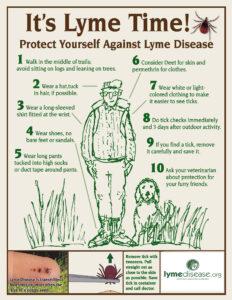 Lyme D image